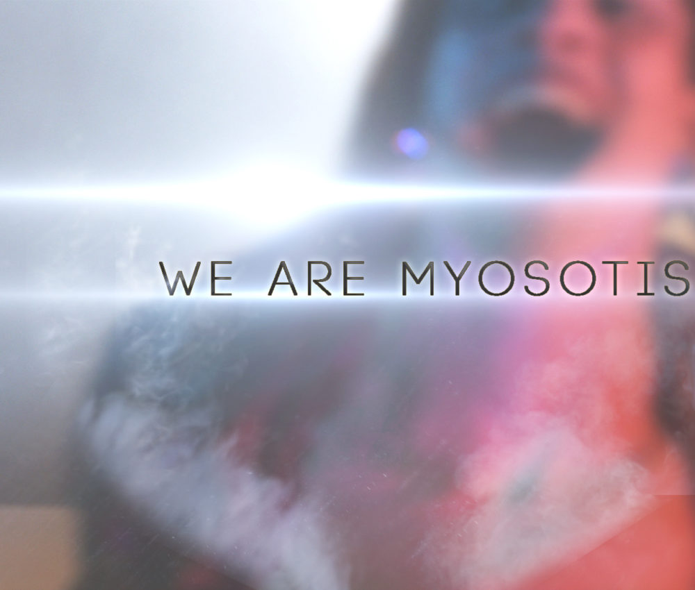 We are Myosotis