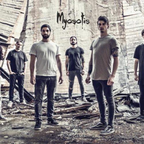 We Are Myosotis 2018